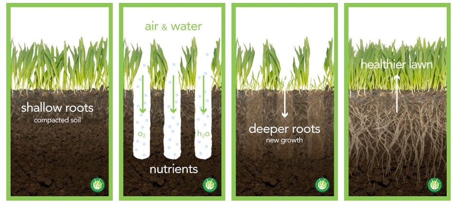 Aeration Is The Process Of Supplying Air To Soil Gr Roots Need Not So Dissimilarly As We Do Supply By Pulling Out Cores