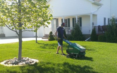Aeration – Why and how often?
